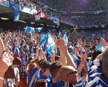 Sheffield Wednesday Photo